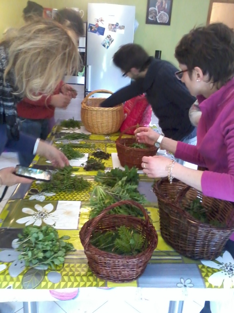 cuisine plantes sauvages des Vosges